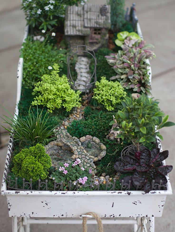 Terrariums Miniature Gardens Hoen S Garden Center Landscaping