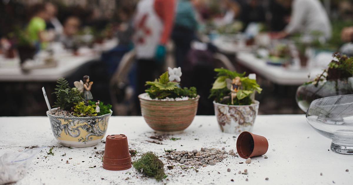 Events Hoen 39 S Garden Center Landscaping